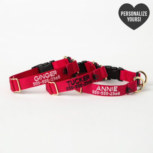 Safe Dog Emergency Break-Away Customizable Collar – Red, Bold
