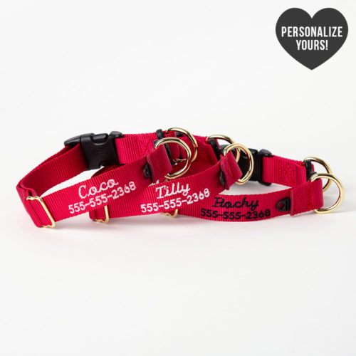 Safe Dog Emergency Break-Away Customizable Collar – Red, Script