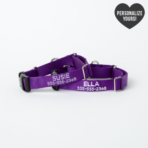 Secure Dog Escape-Proof Martingale Customizable Collar – Purple, Bold