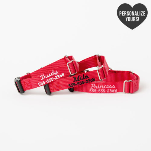 Secure Dog Escape-Proof Martingale Customizable Collar – Red, Script