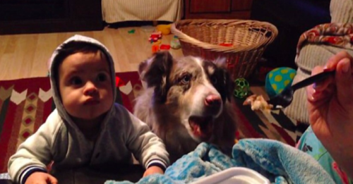 Baby learning to talk with dog