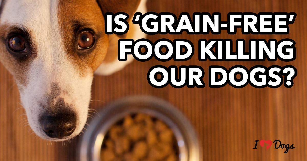 grain free dog food fda