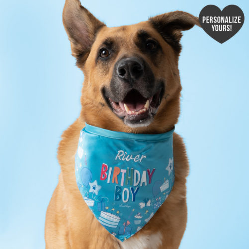 Customizable Birthday Boy Bandana