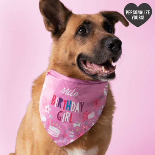 Customizable Birthday Girl Bandana