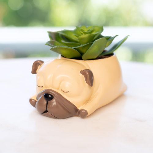 Sleepy Pug Pup Planter Pot