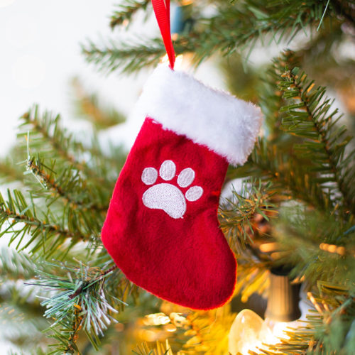 Special Offer! Mini Paw Stocking Ornament