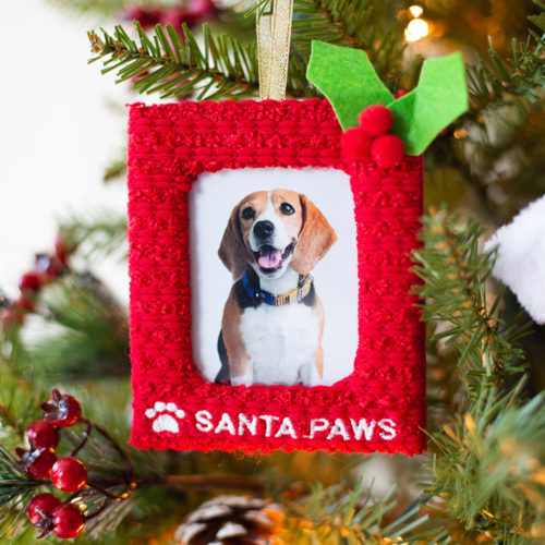 Special Offer! Santa Paws Pup Frame Ornament