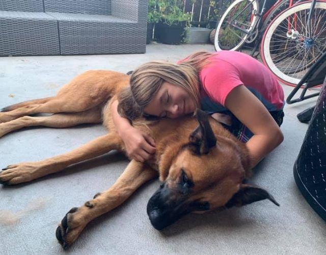 Sami Missing Dog