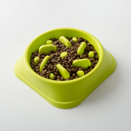 Slow Feeder Interactive Lime Maze Bowl