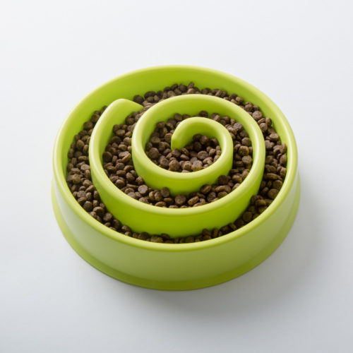 Slow Feeder Interactive Lime Swirl Bowl