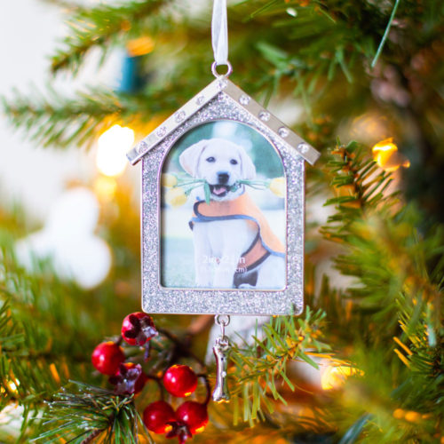 Special Offer! A House Is Not A Home Without A Dog Ornament