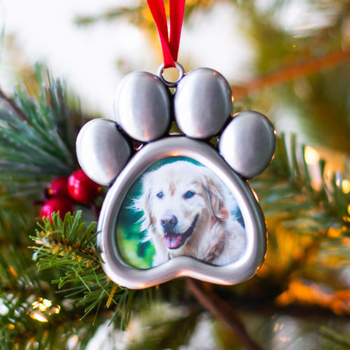 Silver Paws Frame Ornament