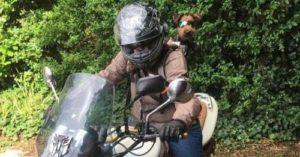 Biker Dog Cover