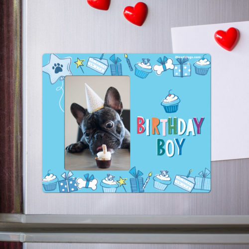 Birthday Boy Picture Frame Magnet