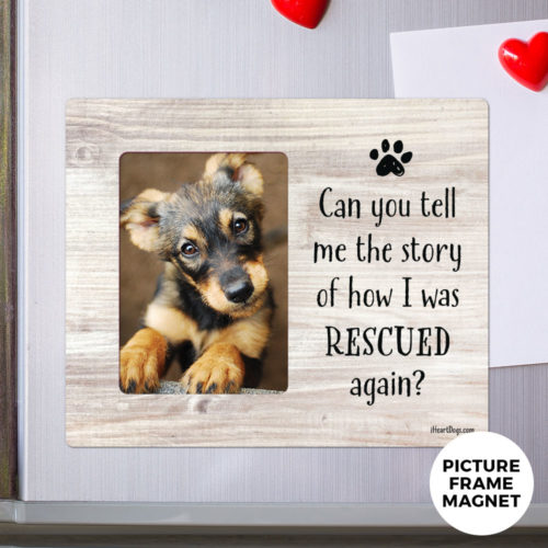 Special Offer! 'Can You Tell Me The Story'  Picture Frame Magnet