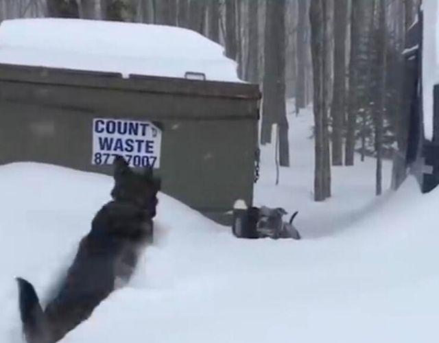 snow rescue