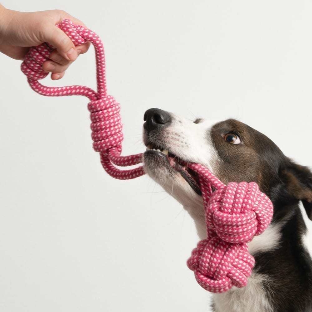 Double The Fun Rope Toy, Medium-Large