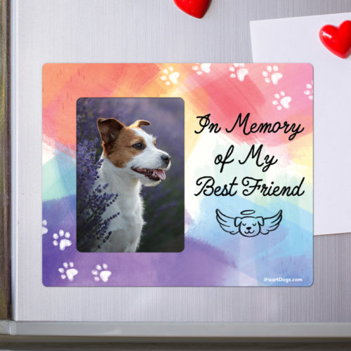 In Memory Of My Best Friend Picture Frame Magnet