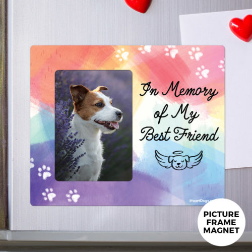 Free In Memory of My Best Friend Picture Frame Magnet