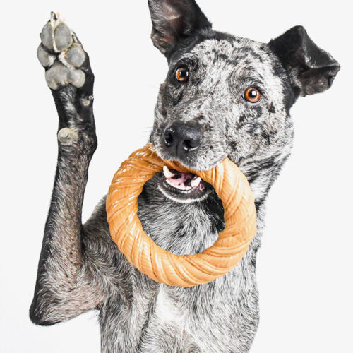 Love To Chew Fetch & Tug Peanut Butter Chew Ring
