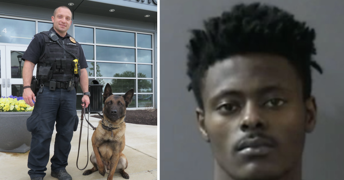 UPDATE: Man Who Killed Police Dog Sentenced To 6 Years