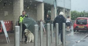 man holds umbrella for dog