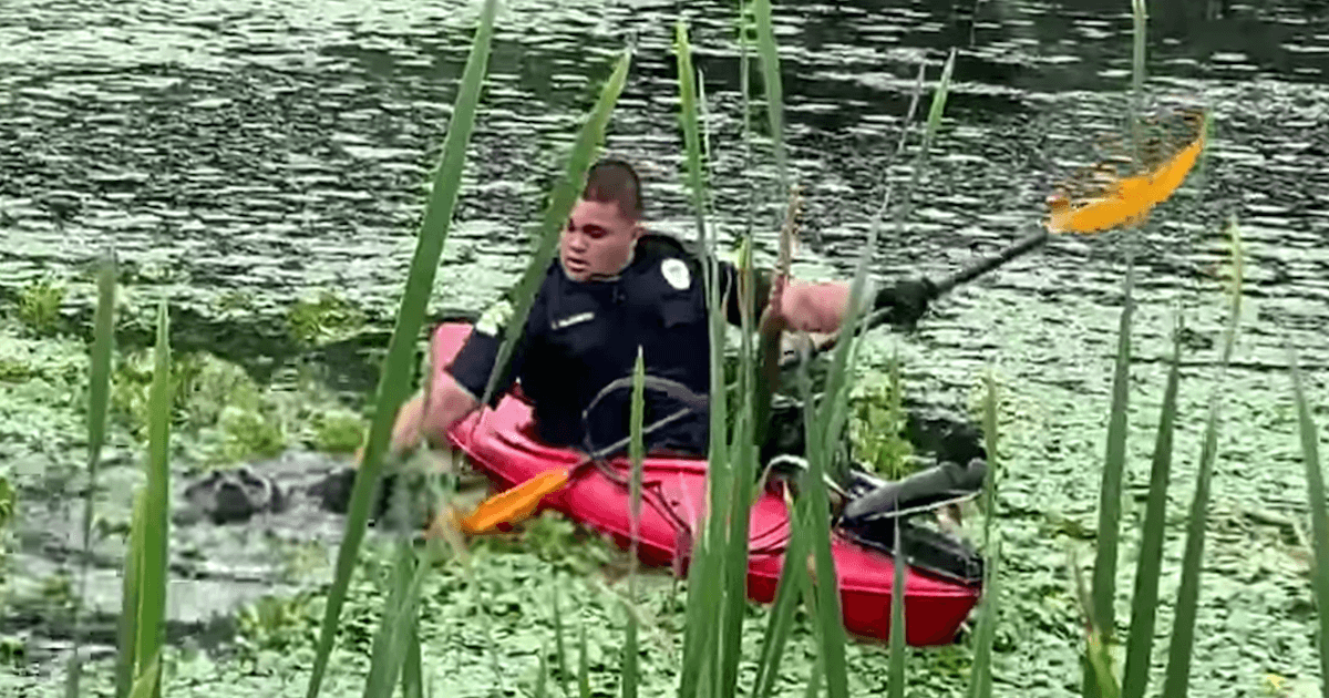 Man in Kayak Rescued Dog