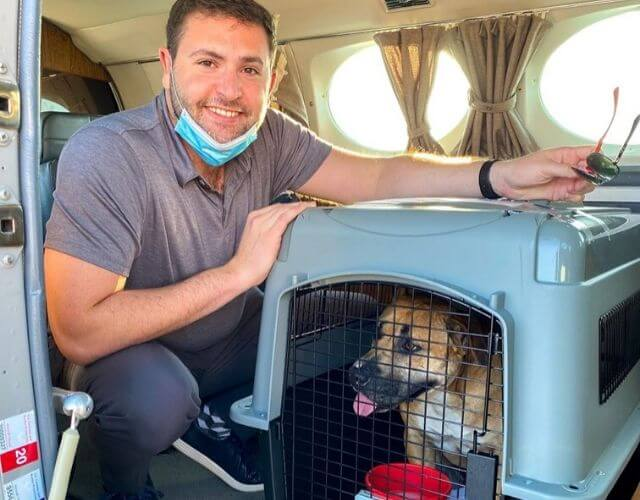 pilot rescues dog