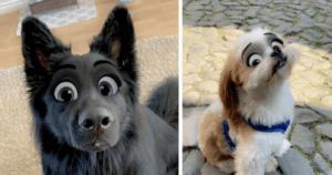 Disney Dogs Snapchat Filter