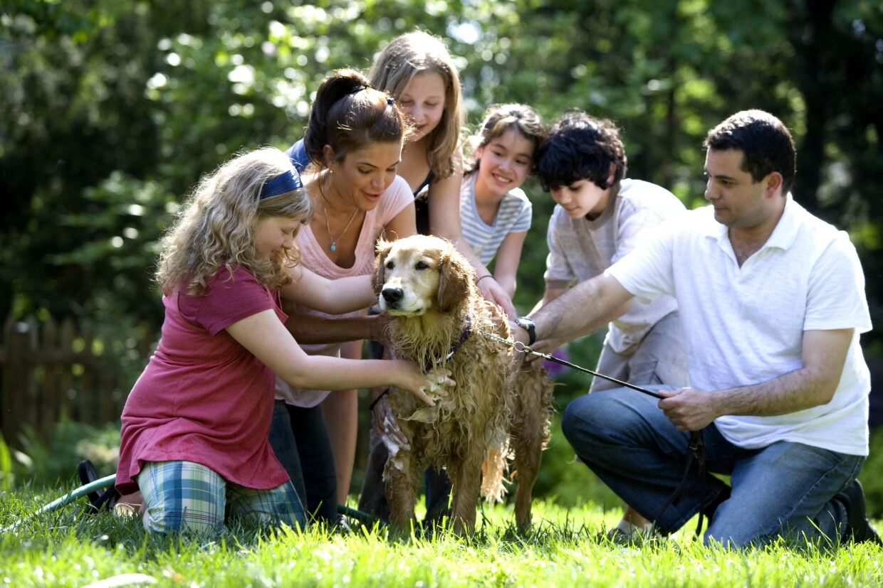 family with dog expensive breeds