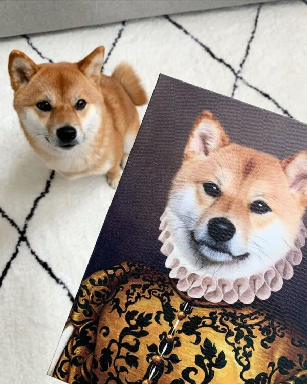 Shiba Renaissance Portrait