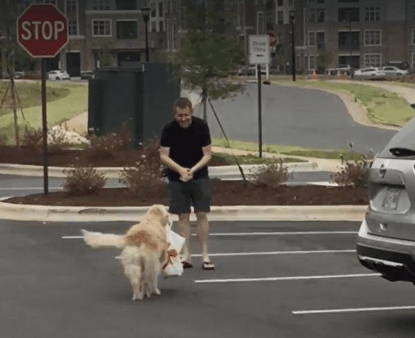 Dog Delivers Chick-Fil-A