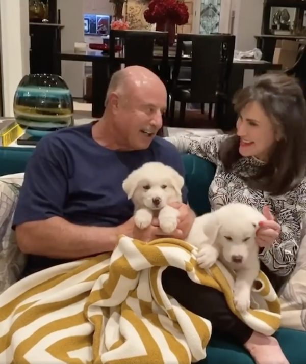 Dr. Phil's Rescue Puppies