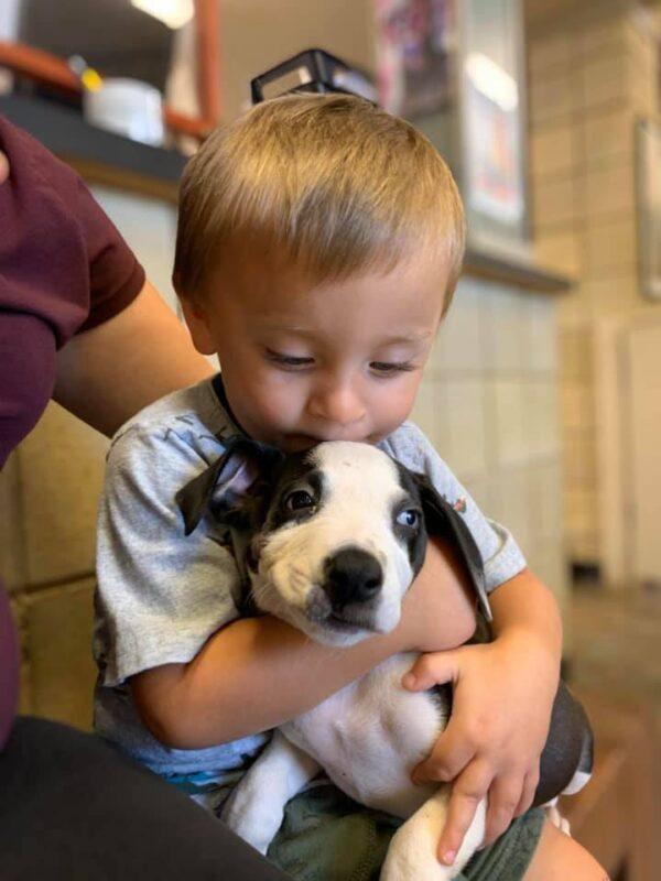 Boy Hugging Puppy