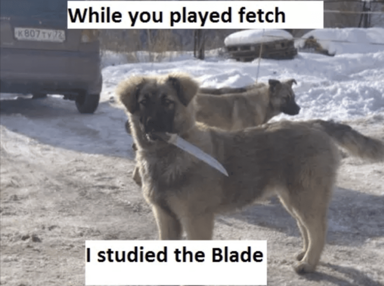 Blade dog