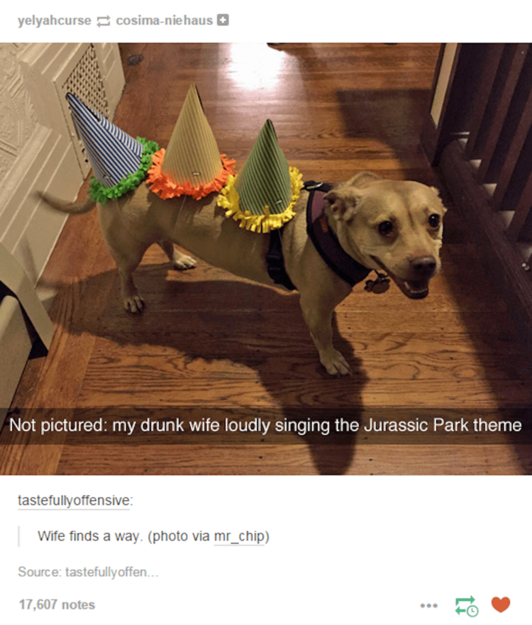 Jurassic Park dog