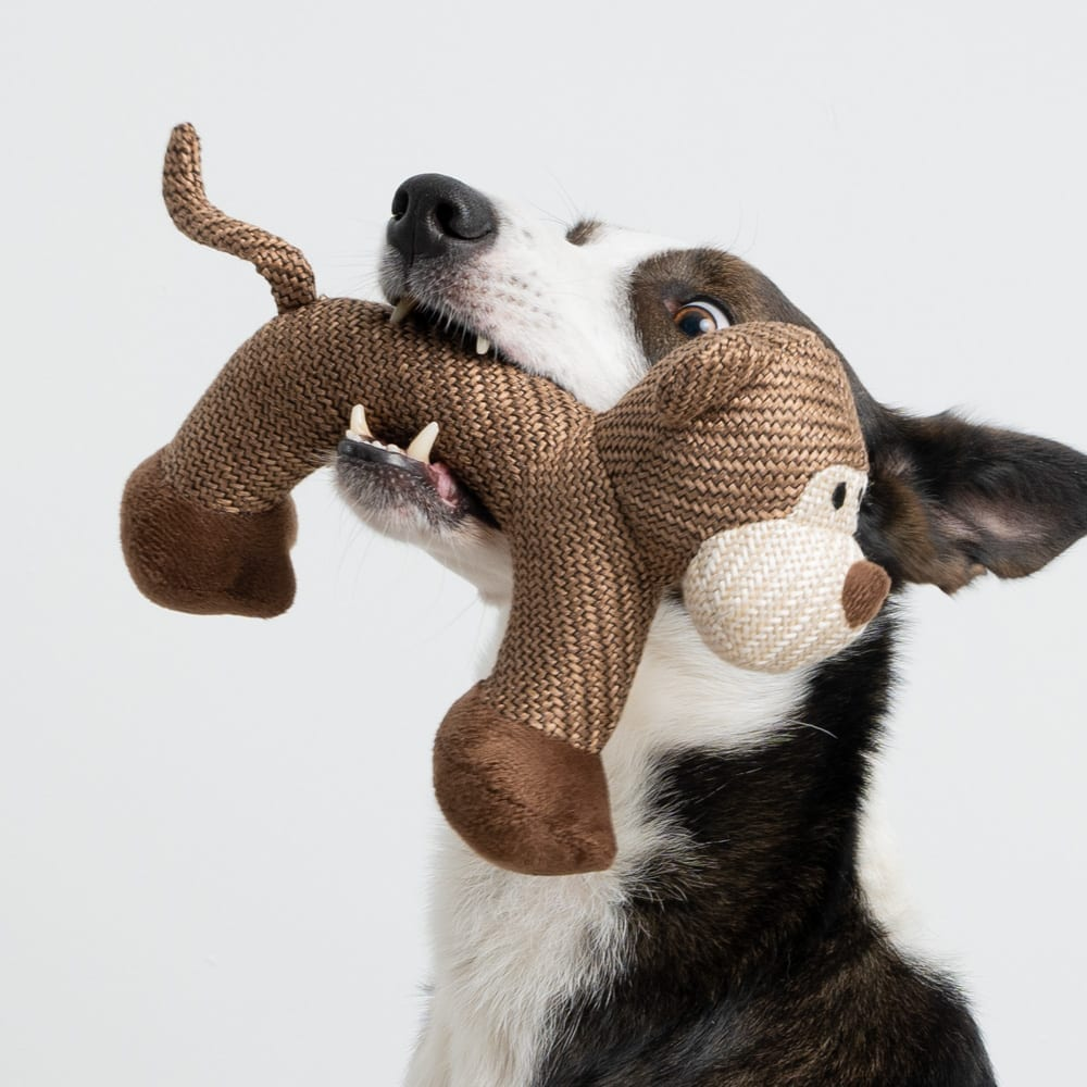 Bowser The Dog- Plush Toy