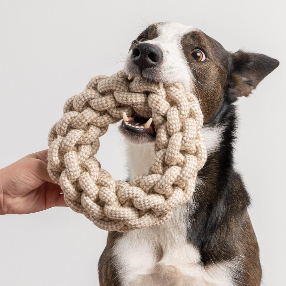 Jumbo Rough & Tough Rope Ring Toy