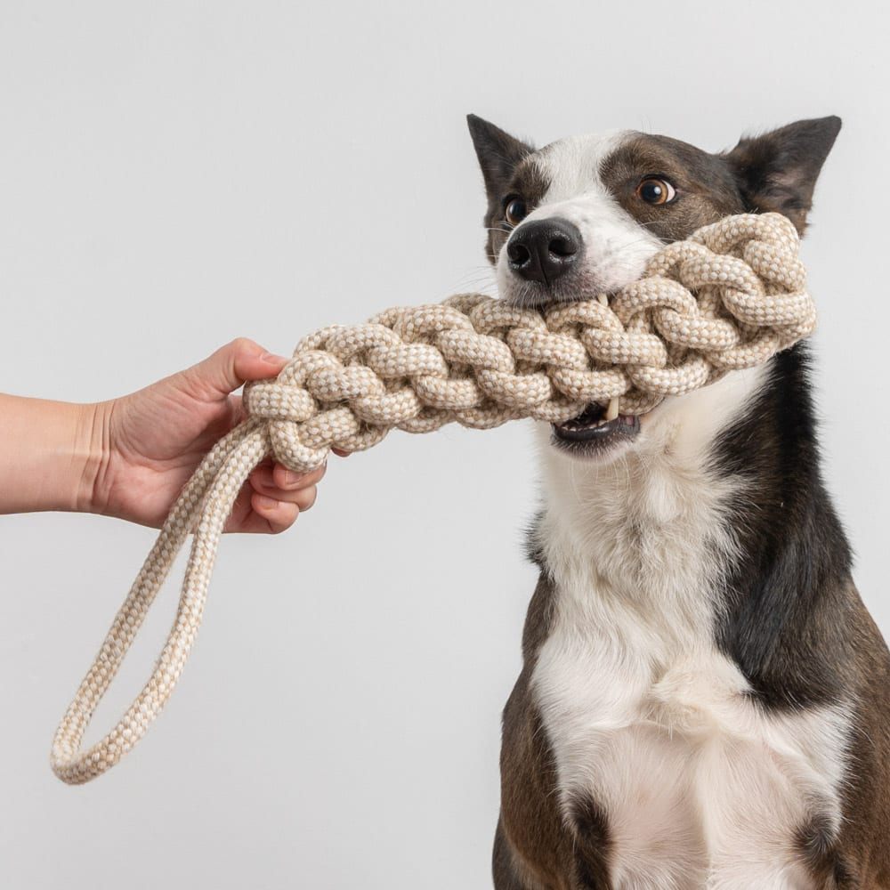 Jumbo Super Durable Game Time Rope Toy