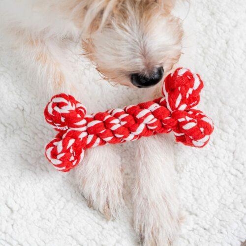 Red & White Stripe Bone Toy