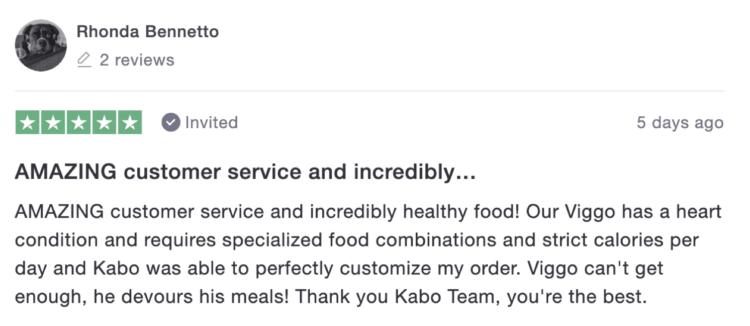 Kabo Review 2