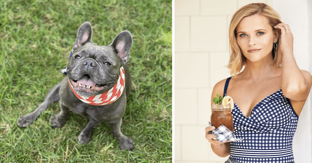 Reese Witherspoon's Dog Pepper
