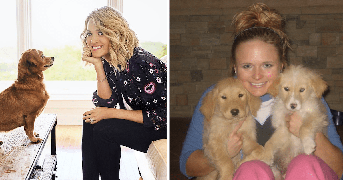 Carrie Underwood and Miranda Lambert dogs