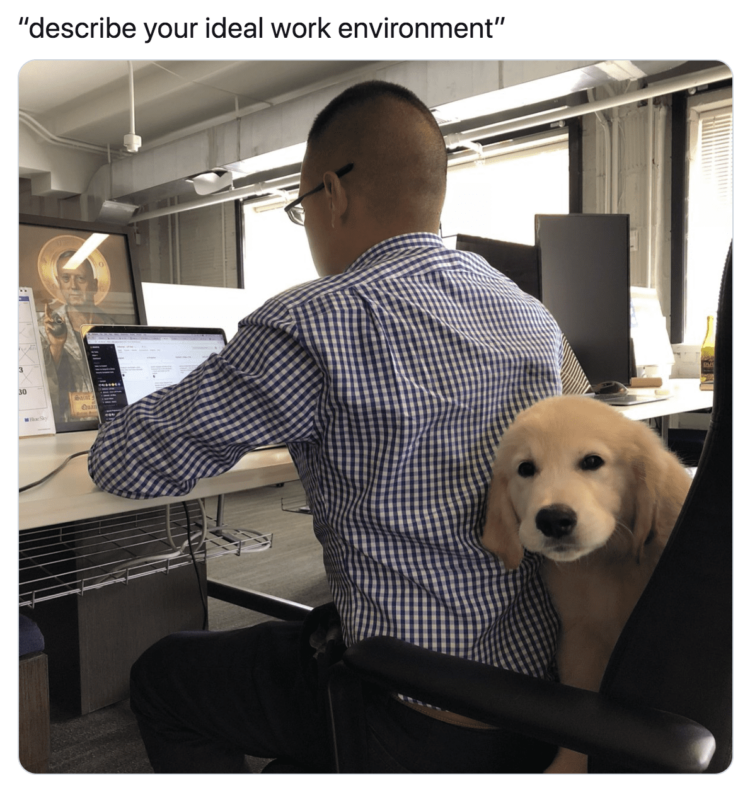 Ideal working environment