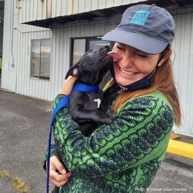 Rescue Puppy Kisses