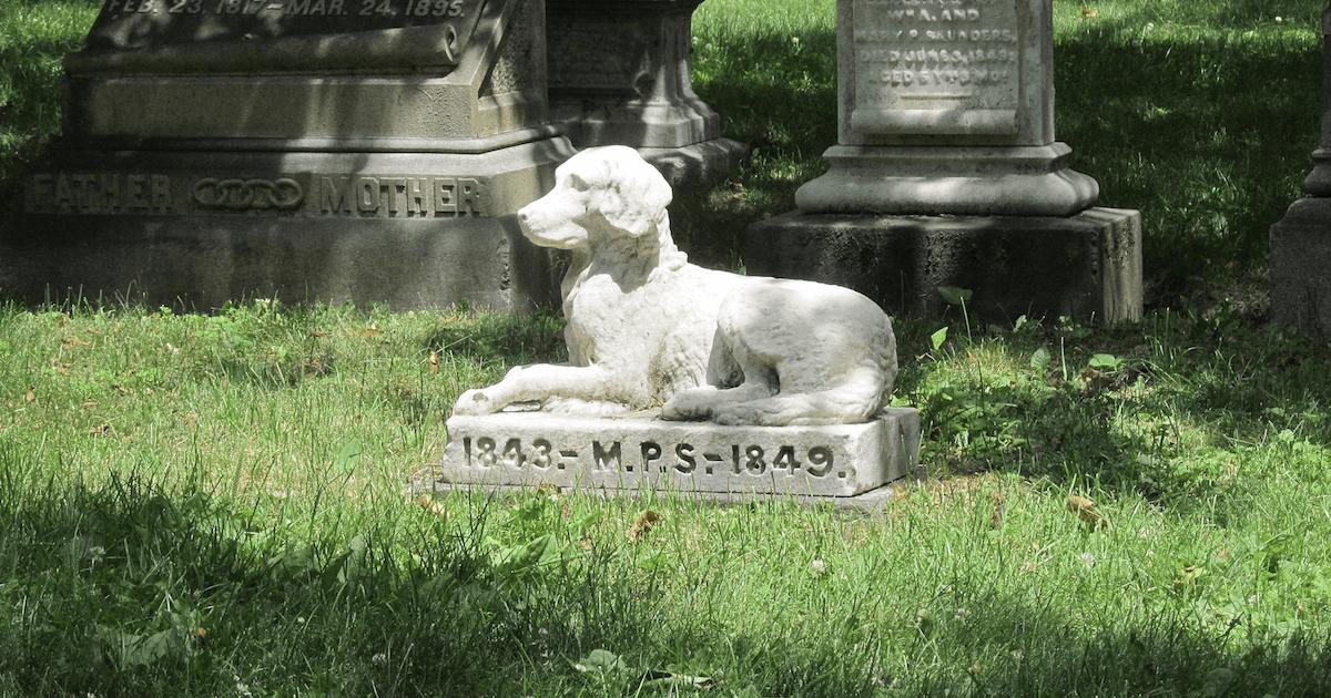 dog gravestone