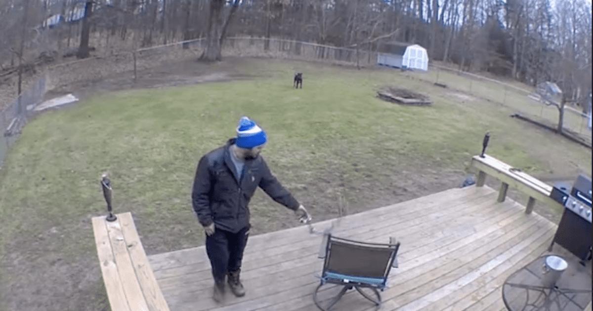 Boyfriend playing with dog