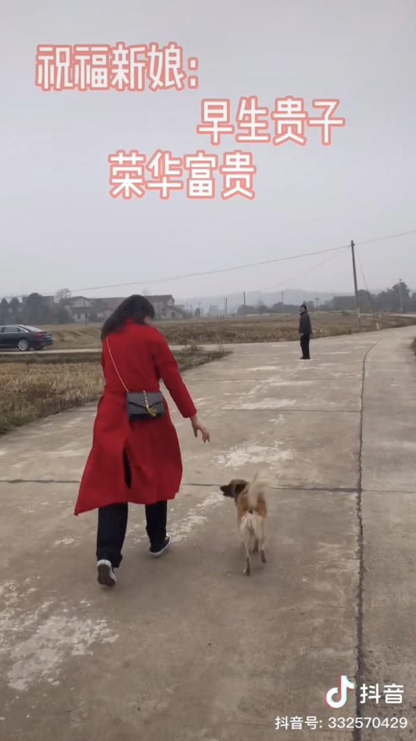 Bride walking with dog