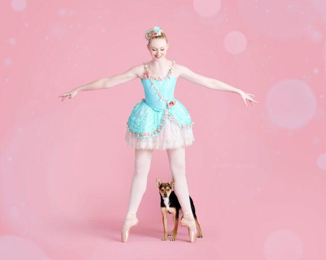 Small dog and dancer