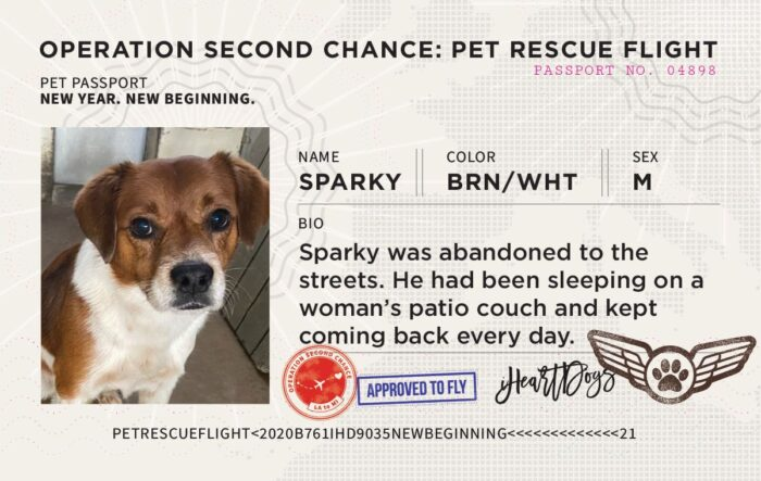 Sparky New Beginnings Transport